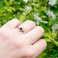 BLACK ROBIN Solitaire Ring