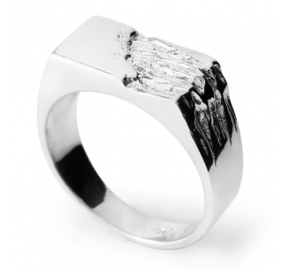 BRUCE Silver Signet Ring